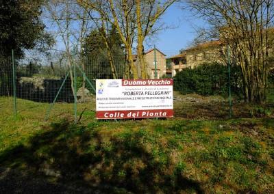 Rilievi dell'Area del Colle del Pionta ad Arezzo 1